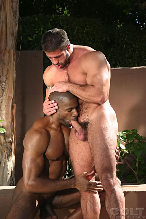мускулистые мужики порно видео