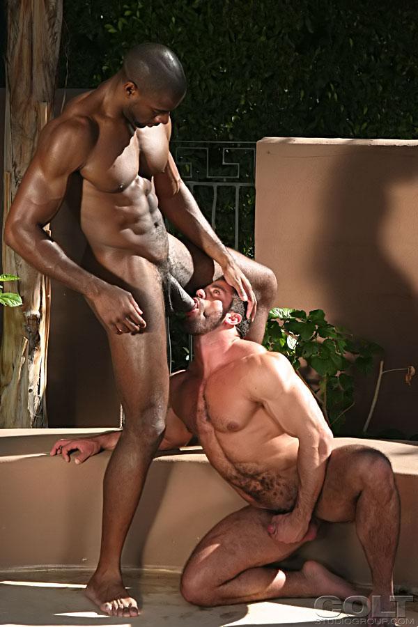 Как Занимаются Сексом Темнокожие Мужчины