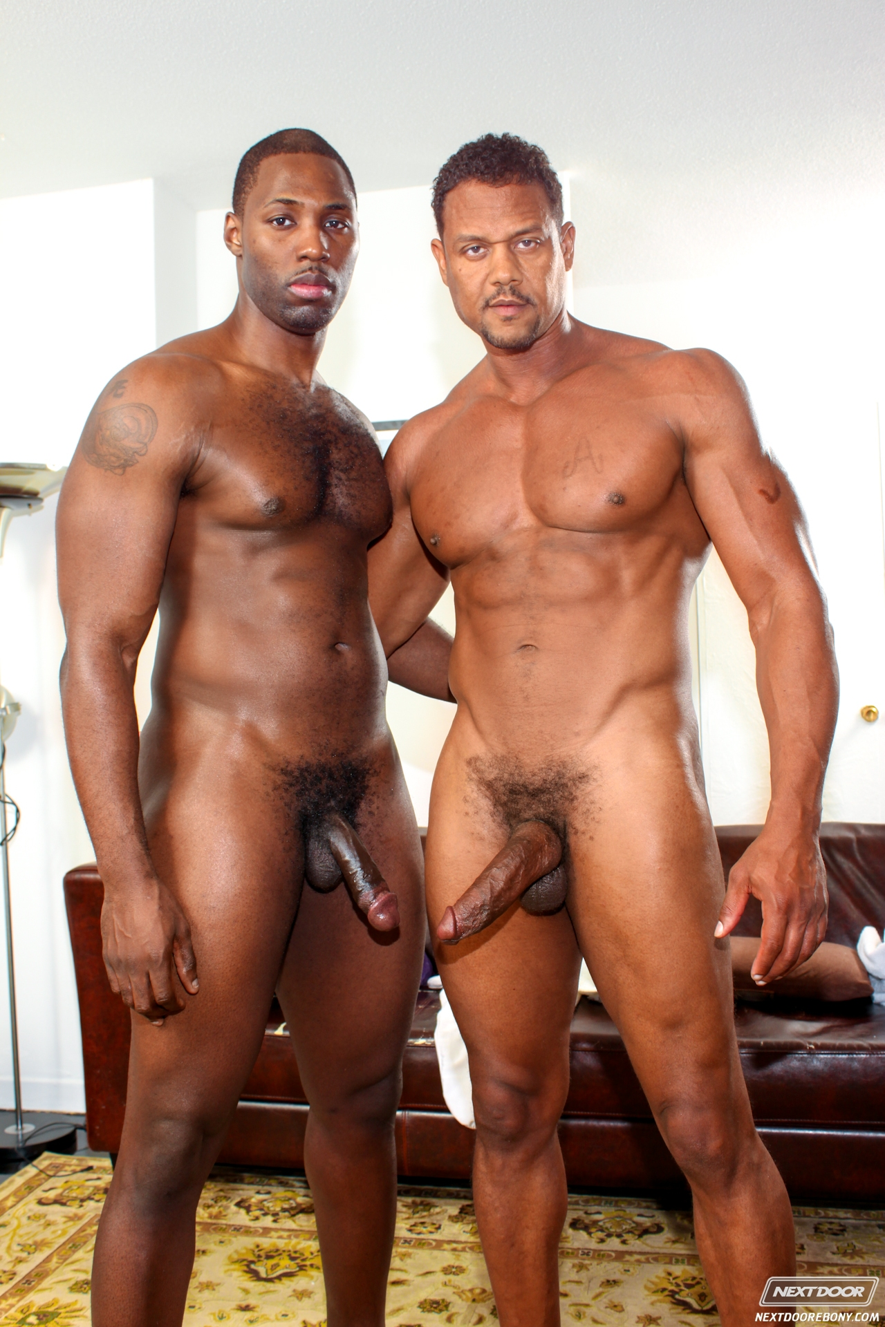 black gay escort videos amateur español